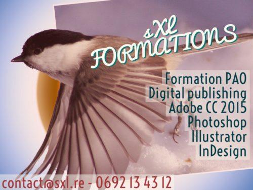 Image formation PAO Ile de la Réunion - Adobe Photoshop, Illustrator, InDesign.