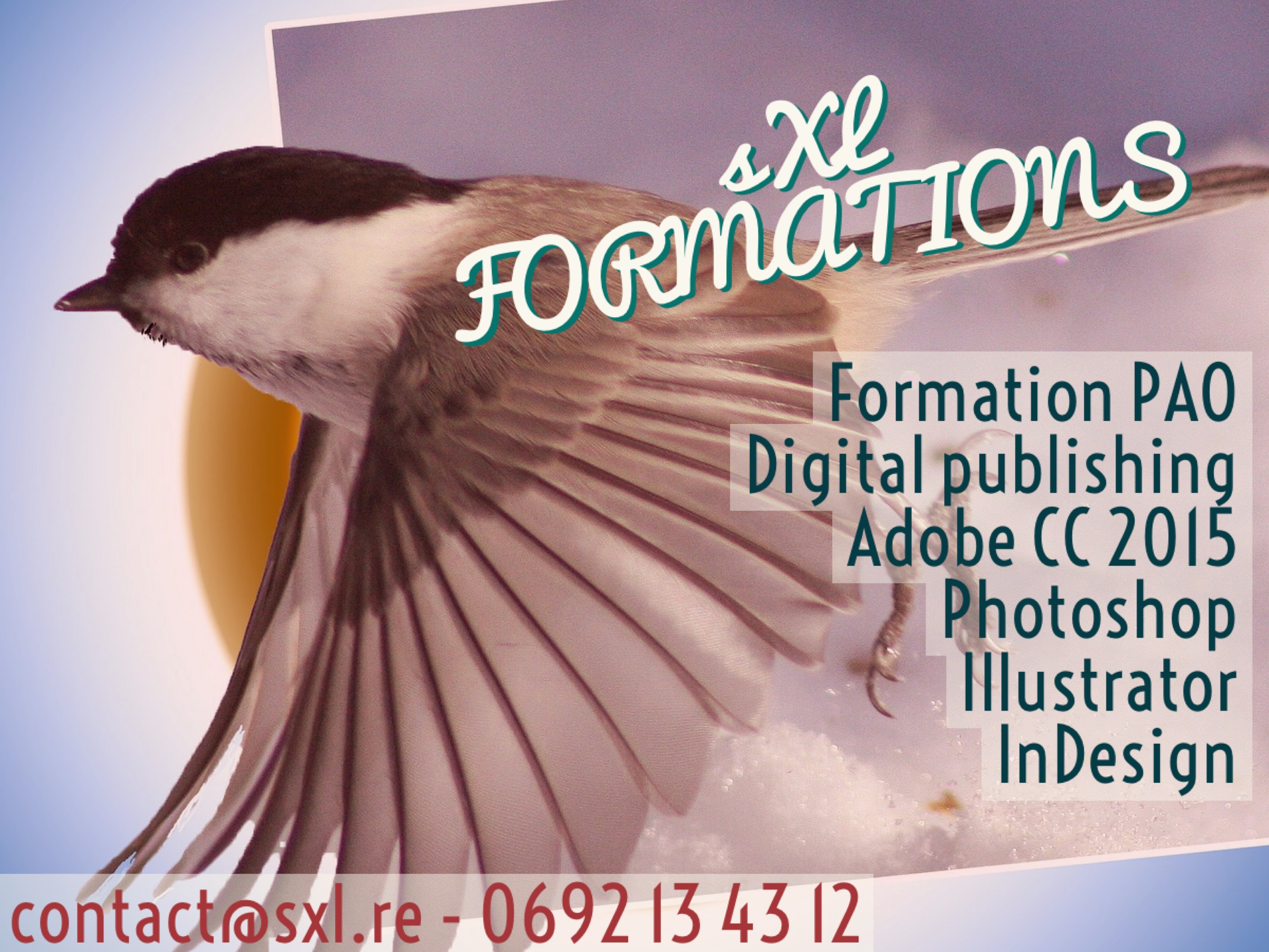 Image formation PAO Ile de la Réunion - Adobe Photoshop, Illustrator, InDesign.