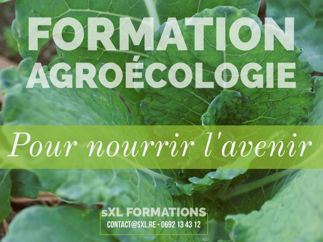 Image formation agriculture bio - Ile de La Réunion